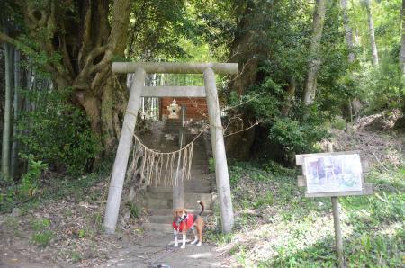 20130418妙見神社06