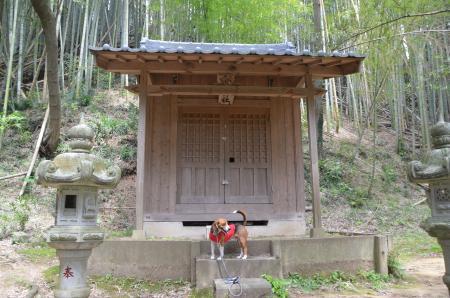 20130418妙見神社08