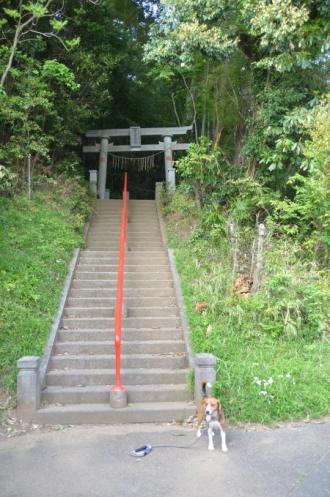 20130427麻賀多神社 大篠塚01