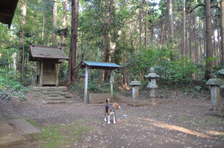 20130427麻賀多神社 大篠塚12