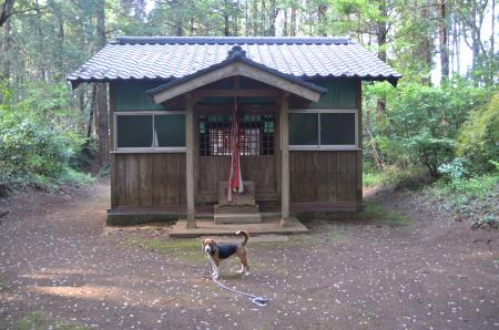 20130427麻賀多神社 大篠塚10