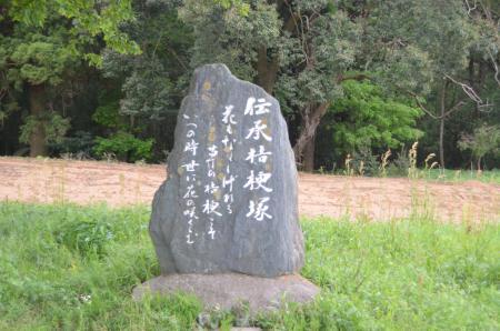 20130430桔梗塚15