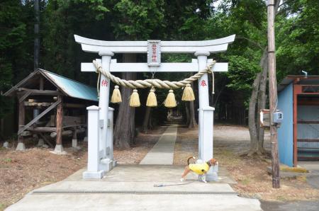 20130501麻賀多神社 高崎02