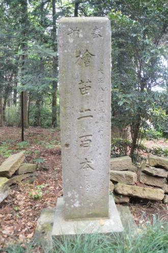 20130501麻賀多神社 高崎11