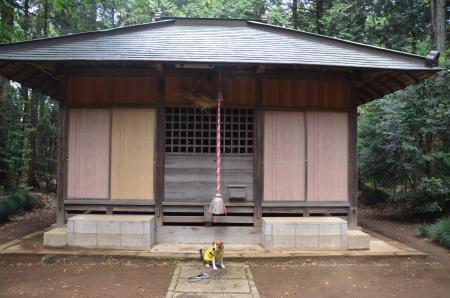 20130501麻賀多神社 高崎08