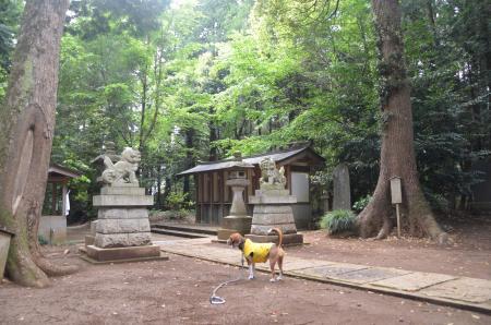 20130501麻賀多神社 高崎14