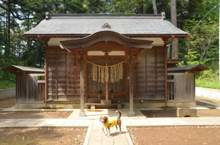 20130501麻賀多神社 大田08