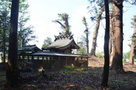 20130501麻賀多神社 飯田11