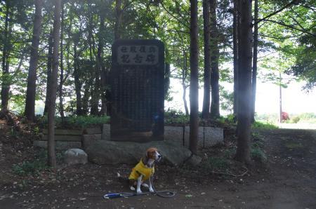 20130501麻賀多神社 飯田09