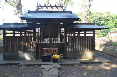 20130501麻賀多神社 飯田07