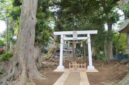 20130502神明大神社06