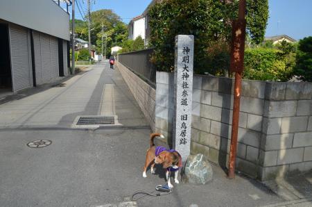 20130502神明大神社03