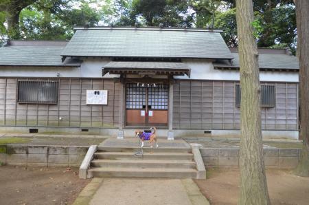 20130502神明大神社10