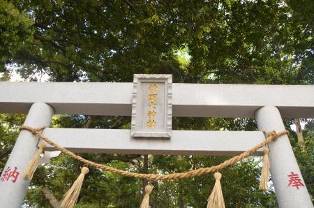 20130502神明大神社16