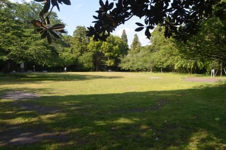 20130502天使の森公園02