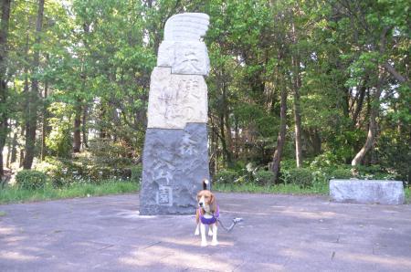 20130502天使の森公園10