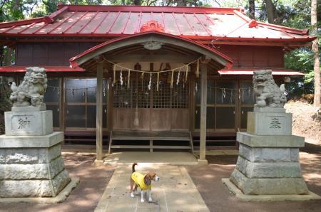 20130501麻賀多神社 城05