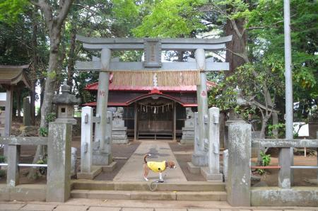 20130501麻賀多神社 城02