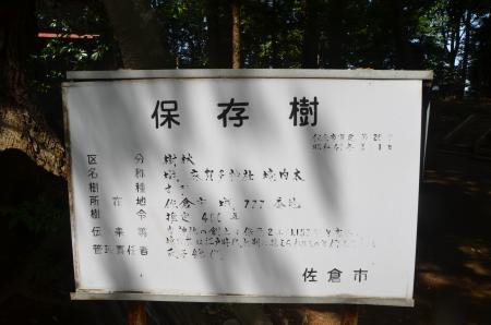 20130501麻賀多神社 城12
