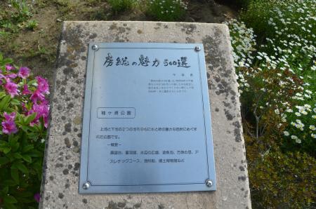 20130506袖ヶ浦公園01