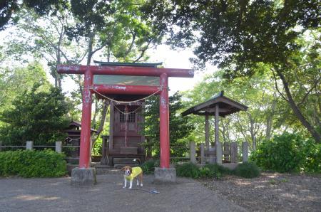 20130506袖ヶ浦公園12