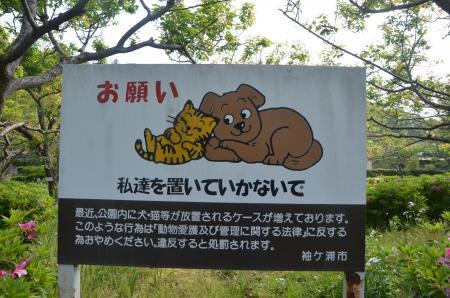 20130506袖ヶ浦公園07