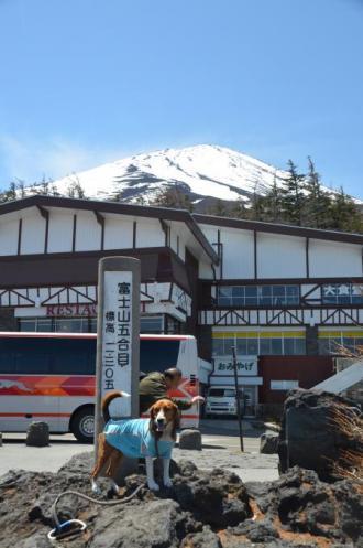 20130513富士山五合目09
