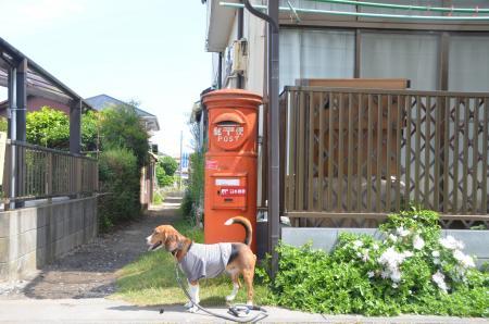 20130601龍ヶ崎丸ポスト23