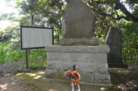 20130601歩崎森林公園09