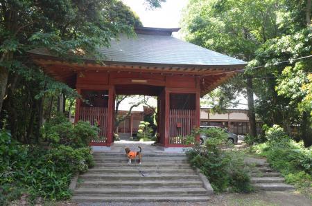 20130601歩崎森林公園13