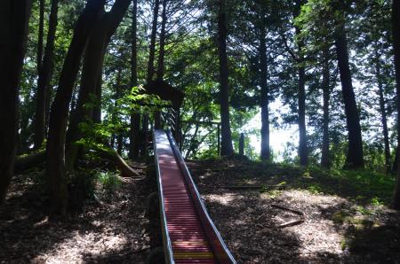 20130601歩崎森林公園20