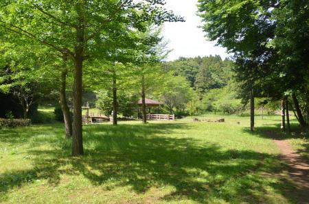 20130601歩崎森林公園25