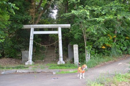 20130603芹沢城址06