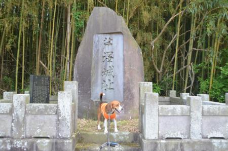 20130603芹沢城址15