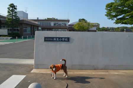 20130603麻生陣屋跡11