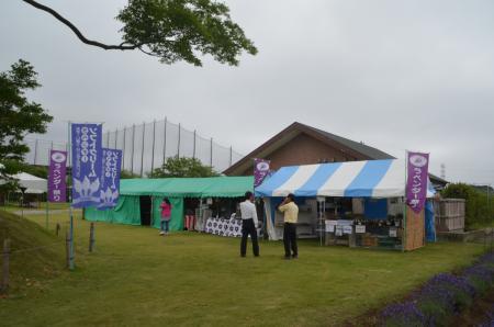 20130612佐倉ラベンダーまつり02