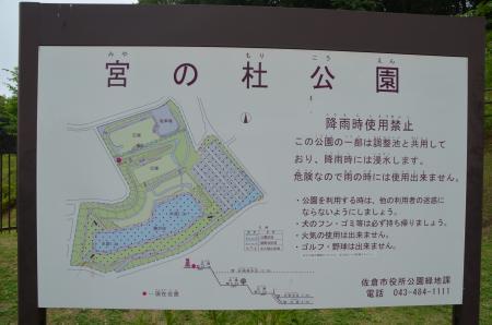 20130612宮の杜公園08