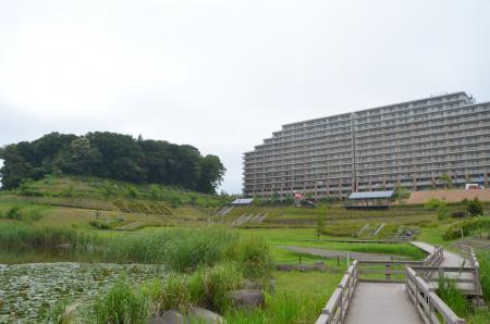 20130612宮の杜公園17
