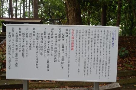 20130612井野城址01