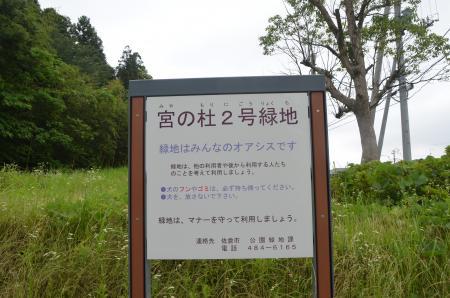 20130612井野城址18