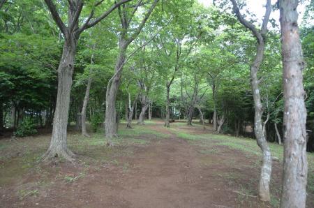 20130617浅間山公園06