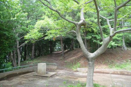 20130617浅間山公園05