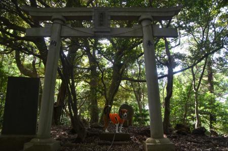 20130617浅間山公園07