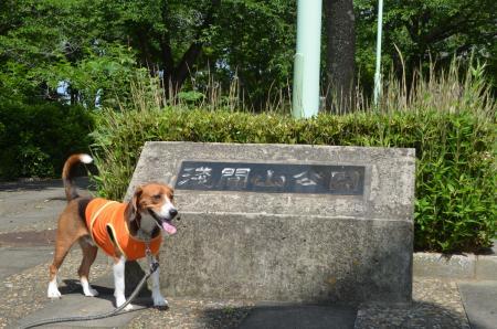 20130617浅間山公園19
