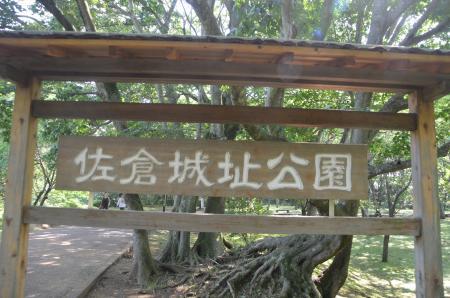 20130622激走 佐倉城址公園02
