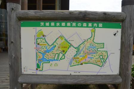 20130629茨城県水郷県民の森02