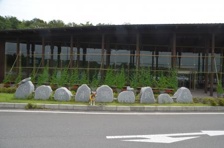 20130629茨城県水郷県民の森01