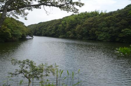 20130629茨城県水郷県民の森32