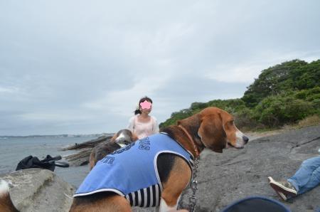 20130703沖の島17
