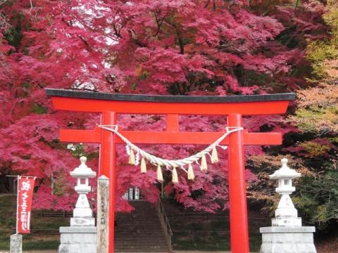 紅葉の神社 (4)
